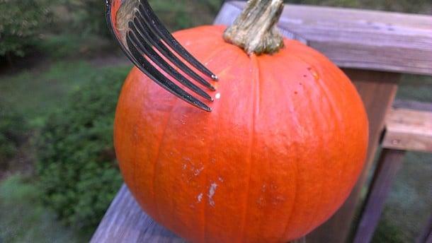 Step by Step Slow Cooker Pumpkin Purée