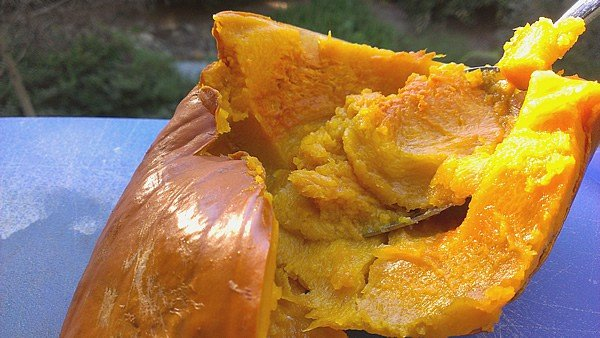 Step by Step Slow Cooker Pumpkin Purée