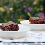 Fran's Chocolate Chip Brownies