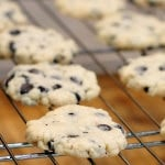 Stevia Sweetened Chocolate Chip Shortbread - vegan and sugar-free | HeathySlowCooking.com
