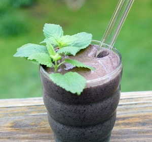 Lemon Balm Mint Blueberry Smoothie