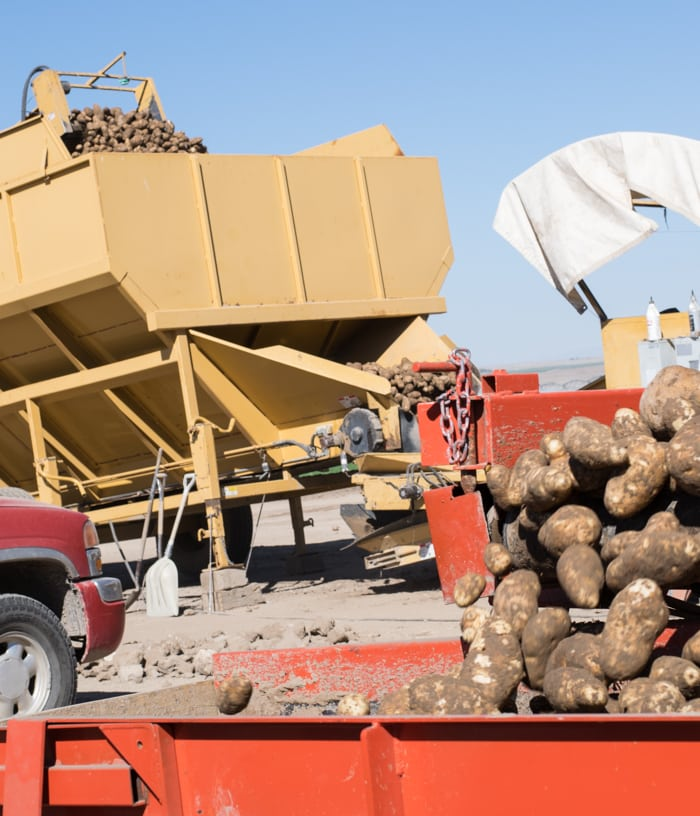 2015 Potato Harvest Tour