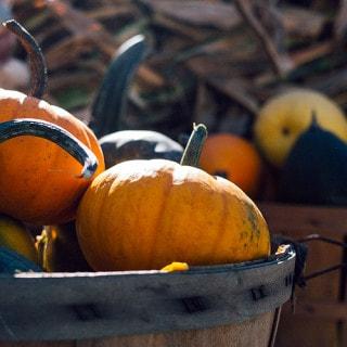 6 Vegan Thanksgiving Side Dish Recipes