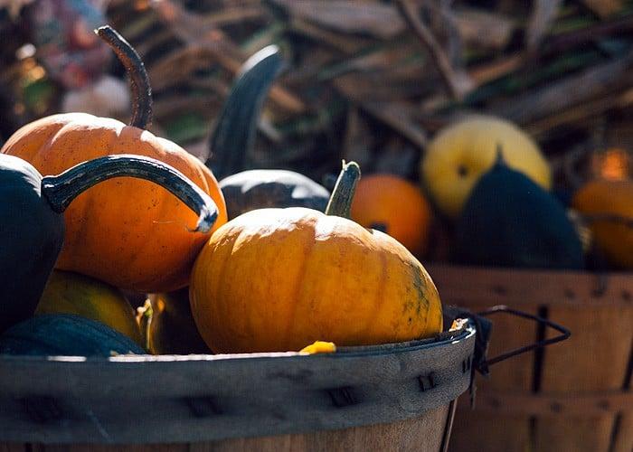 5 Vegan Thanksgiving Side Dish Recipes
