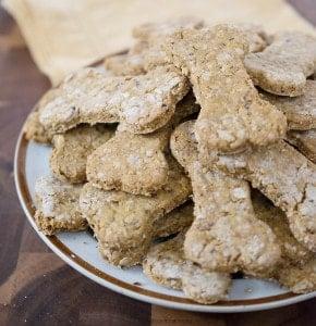 Vegan Pumpkin Cranberry Dog Cookies
