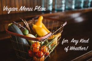 Vegan Menu Plan for Any Kind of Weather!