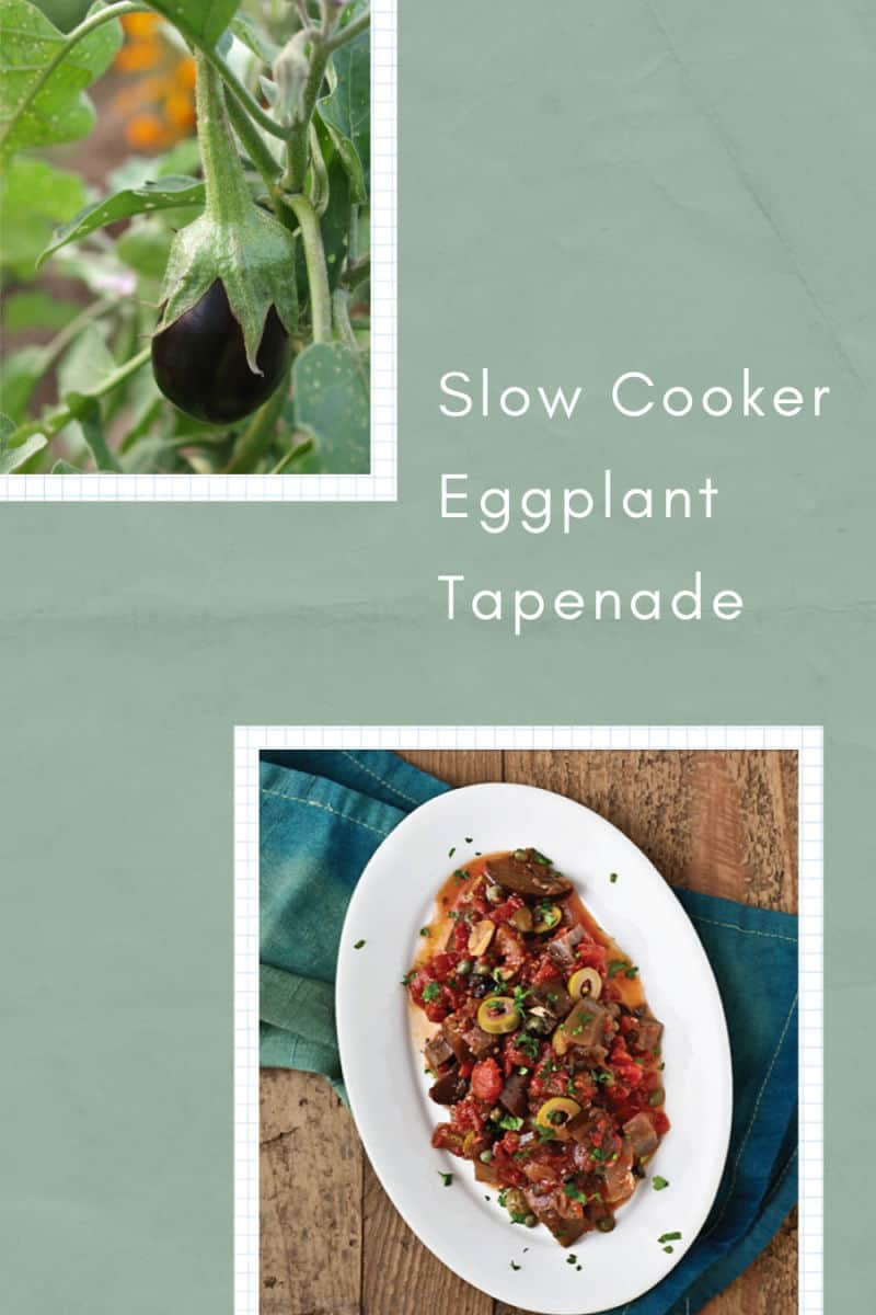 Slow Cooker Eggplant Tapenade